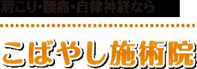 【佐久市の整体マッサージ・カイロ】こばやし施術院:ホーム
